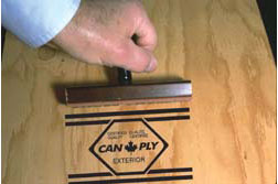 CANPLY stamp on plywood