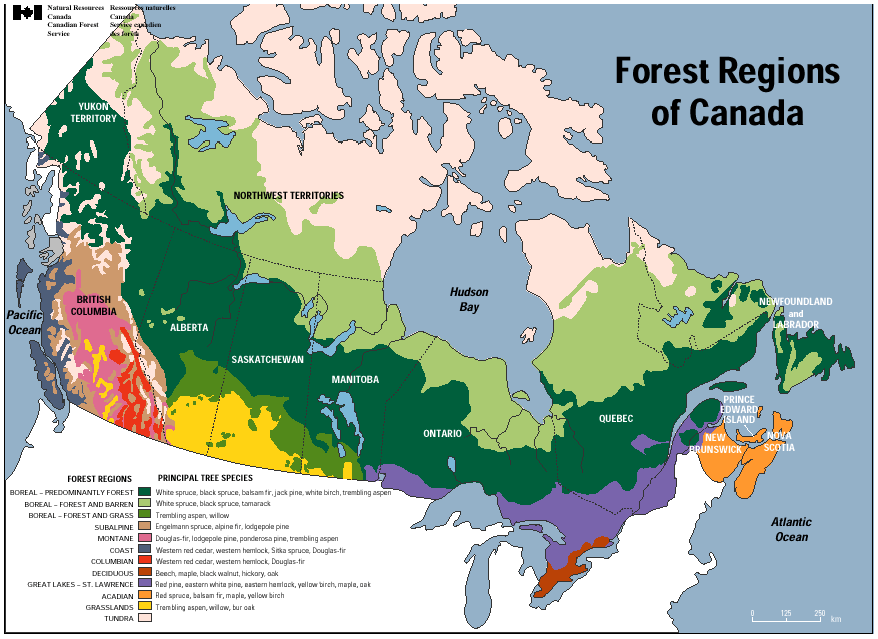 Map Of Canada 1870.Canadian Species The Canadian Wood Council Cwc The Canadian